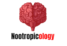Nootropicology about ModafinilXL